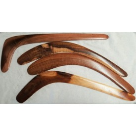 Traditional hunting boomerangs - black wattle timber